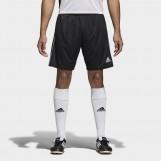Шорты мужские Adidas Core 18 Training CE9031