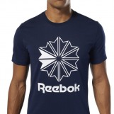 Футболка мужская Reebok Classics Big Logo Tee DT8115