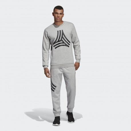 Брюки мужские Adidas TAN Graphic DP2695