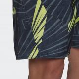 Шорты мужские Adidas  Graphic Tech FJ3919
