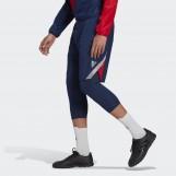 Шорты  мужские Adidas TAN FS5056